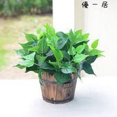仿真植物假植物綠植室內外裝飾木桶盆栽