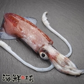 【南紡購物中心】【海鮮主義】透抽(2包組-每包900G)