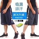 CS衣舖 5L-6L大尺碼 吸濕排汗 極度快乾 防掉拉鍊 運動短褲 伸縮腰圍 兩色 #2848