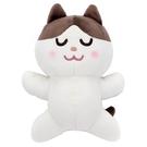T-ARTS 睡覺好朋友 免費素材庫 貓咪_TA54707
