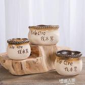 素燒多肉花盆陶瓷粗陶大小號多肉肉植物創意花器小盆栽  全館免運