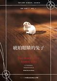 (二手書)琥珀眼睛的兔子