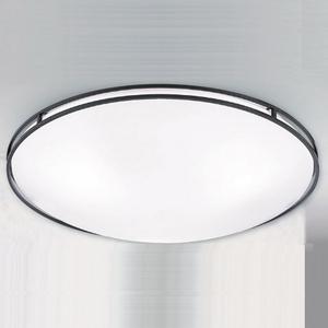 【大巨光】台製現代風吸頂燈_中(LW-09-3332)