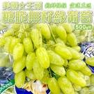 【果之蔬-全省免運】美國女王頭糖脆無籽綠葡萄X2盒(每盒500g±10%)