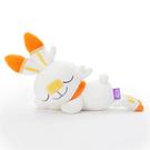 T-ARTS 睡覺好朋友 精靈寶可夢 炎兔兒 S_TA23987