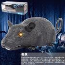 人物遙控動物電動兒童動物玩具寶寶玩具1—...