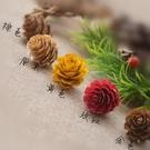 天然乾果,彩色落葉松,尺寸約2.5-4cm (一份2個)