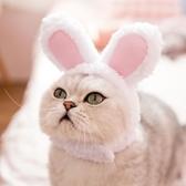 網紅兔子貓咪頭套狗狗泰迪比熊變身可愛帽子小耳朵英短加菲貓頭飾