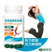 【赫而司】海藻精碘軟膠囊(60顆/罐)藻褐素碘MCT促進新陳代謝