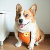 狗狗肚兜圍防水夏薄款防著涼護肚子寵物護肚雨衣【櫻田川島】