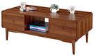 【南洋風休閒傢俱】茶几系列-麥可胡桃二抽大茶几邊桌 角桌 沙發桌 咖啡桌 (JF255-2)