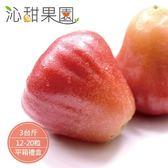 沁甜果園SSN.外銷等級-黑珍珠蓮霧禮盒3斤裝/箱﹍愛食網