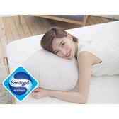 [Snug Nights]國際抗菌技術sanitized山寧泰☆45×75cm防蹣抗菌竹炭纖維枕