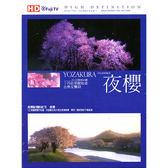 高畫質HD-夜櫻DVD