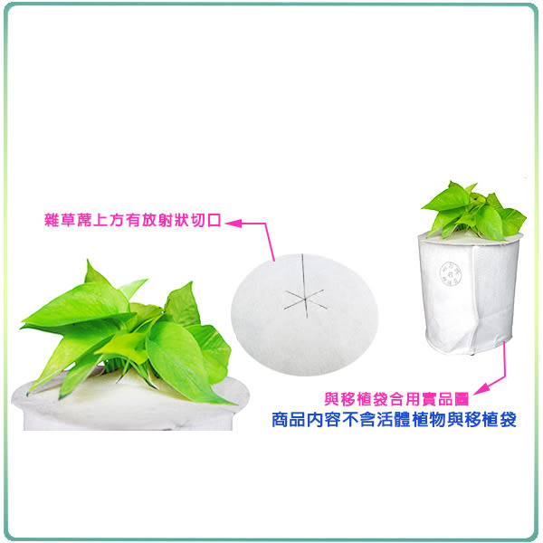【綠藝家】抑草蓋.圓盆專用雜草蓆.雜草抑制蓆(不織布)5吋