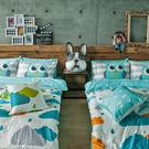 床包兩用被組 / 雙人加大【遇見朵朵藍】含兩枕套,鋪棉兩用被套,100%精梳棉,戀家小舖台灣製