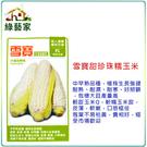 【綠藝家】G34.雪寶甜珍珠糯玉米種子2...