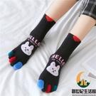 純棉五指襪女全棉中筒棉襪小熊兔子保暖分腳趾襪子【創世紀生活館】