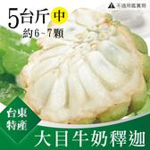台東特產 嚴選 大目牛奶釋迦5斤(中6~7粒)
