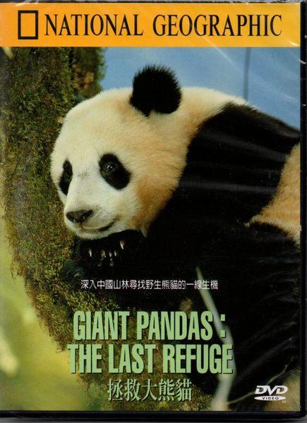 【停看聽音響唱片】【DVD】拯救大熊貓