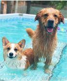 游泳池 超大號狗狗游泳池金毛薩摩大型犬泰迪泳池可折疊寵物戲水池洗澡盆免運宜品居家 Igo