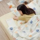 【青鳥家居】 雙面雙層紗涼感紗 涼被枕套組單人 - 南茜