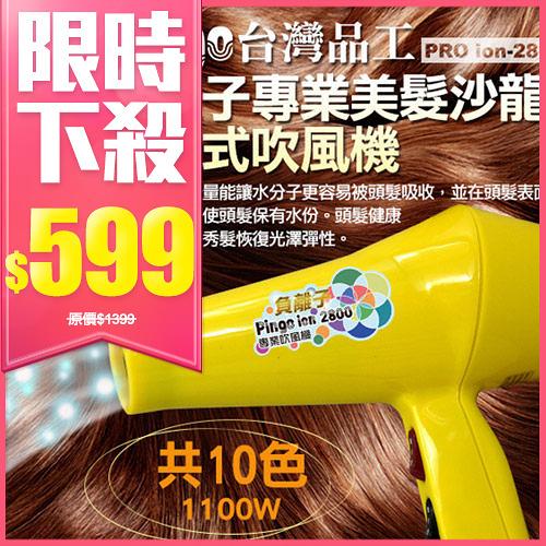 【限宅配】Pingo品工 ion-2800 專業美髮沙龍負離子吹風機 1入【BG Shop】多色供選