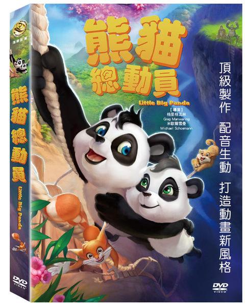 熊貓總動員 DVD (購潮8)