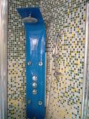 【麗室衛浴】國產淋浴柱 Z107 160*25*10CM 4個按摩噴頭 門市樣品出清
