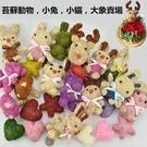永生花花材,苔蘚動物,小兔,小貓,大象賣場