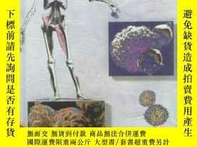 二手書博民逛書店Understanding罕見Pathophysiology-了解病理生理學Y361738 Sue E. Hu