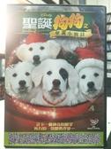 挖寶二手片-D75-正版DVD-電影【聖誕狗狗之聖誕小寶貝】-迪士尼 國英語發音(直購價)