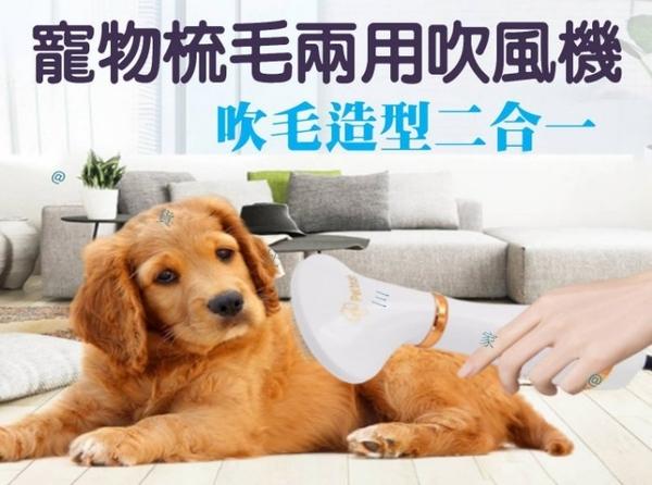 寵物梳毛吹風機 去毛梳 寵物梳 貓咪梳 狗狗梳 貓咪吹風機 狗狗吹風機 除毛針梳 暖風熱風