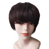 短假髮(真人髮絲)-蓬鬆自然柔順仿真女假髮2色74ai38【時尚巴黎】