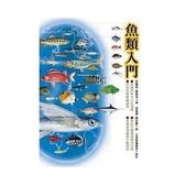 【遠流】魚類入門/昆蟲入門(二手書出清) (介意者勿下單)