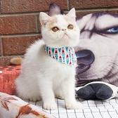 三角巾口水巾圍巾幼貓圍脖成貓領巾寵物飾品卡通三角巾圍【宅貓醬】