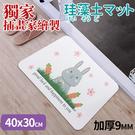 珪藻土 日本技術插畫硅藻土腳踏墊(40*30CM)【DNA025】收納女王