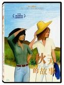 【停看聽音響唱片】【DVD】秋天的故事 經典數位修復