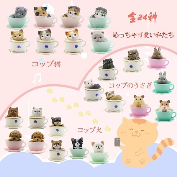 新款咖啡杯小兔兔公仔/茶杯兔/桌面裝飾/玩具盲盒/辦公室小物