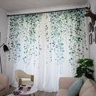 限定款拍攝背景窗簾 家用小清新印花窗簾