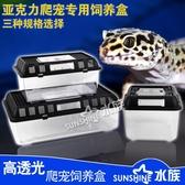 壓克力爬寵飼養盒蜥蜴蜘蛛飼養箱