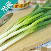 【台灣】翠綠青蔥1包(200g±5%/包)【愛買冷藏】