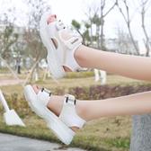 涼鞋女仙女風百搭運動厚底平底鞋