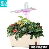 照景燈 植物燈 植力【智慧種植機】家庭室內種菜蔬菜番茄育苗多肉補光燈植物生長 風馳