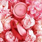 情趣用品-送跳蛋 法國ZALO凡爾賽 Fanfan set 情侶共享按摩器 搖控版 金屬表面24k金 粉紅色
