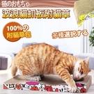 【培菓平價寵物網 】貓咪專屬》波浪型加厚...