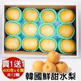 【WANG-全省免運】韓國特大XL甜潤水梨禮盒X1盒(12顆/盒 每顆約400g±10%)