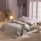 鴻宇 床包兩用被套組 雙人特大 色織水洗棉 魯伯特 台灣製2117