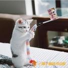 逗貓棒貓玩具羽毛帶鈴毛毛蟲尾巴鐺響紙逗小貓【小獅子】