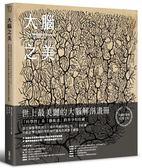 (二手書)大腦之美:神經科學之父卡哈爾,80幅影響大腦科學&現代藝術的經典手繪稿..